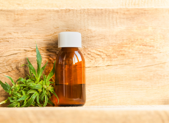 Is CBD Oil Good for your Cats?